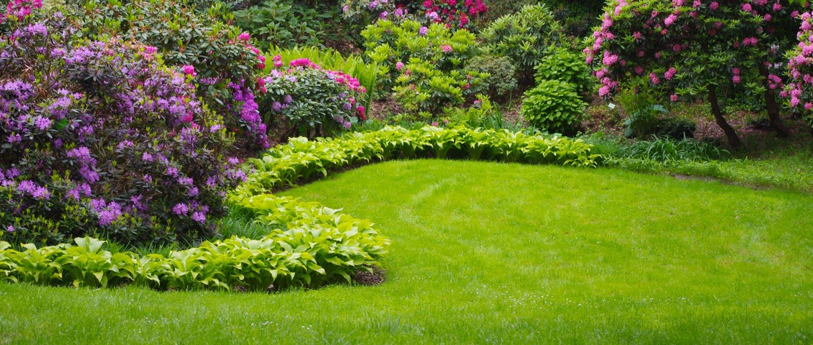 Espaces Verts ESAT Les Tournesols création jardin